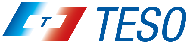 Logo teso